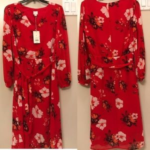 NWT A New Day red, floral dress